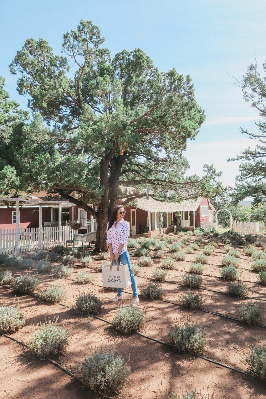 Pine Creek Lavender Farm - things to do in Pine and Strawberry Arizona