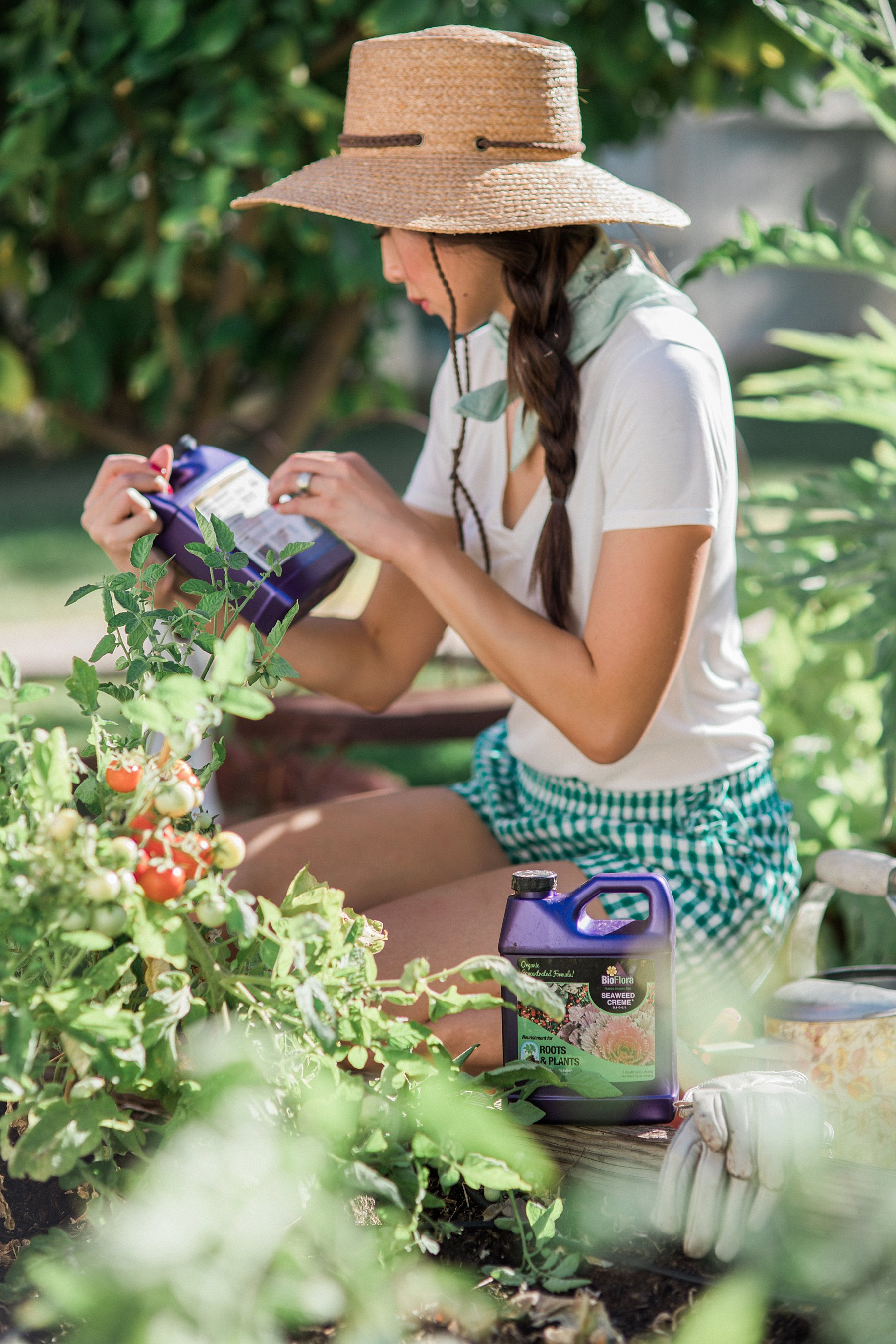 In the backyard garden with lifestyle blogger home and garden lover blogger: With BioFlora organic fertilization for gardens and shrubs and trees a review // collecting tomatoes