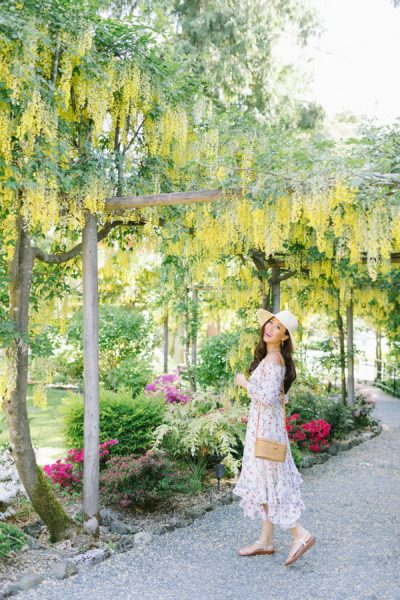 butchart gardens in Victoria Canada wearing floral strapless dress Tahari ASL on blogger Diana Elizabeth