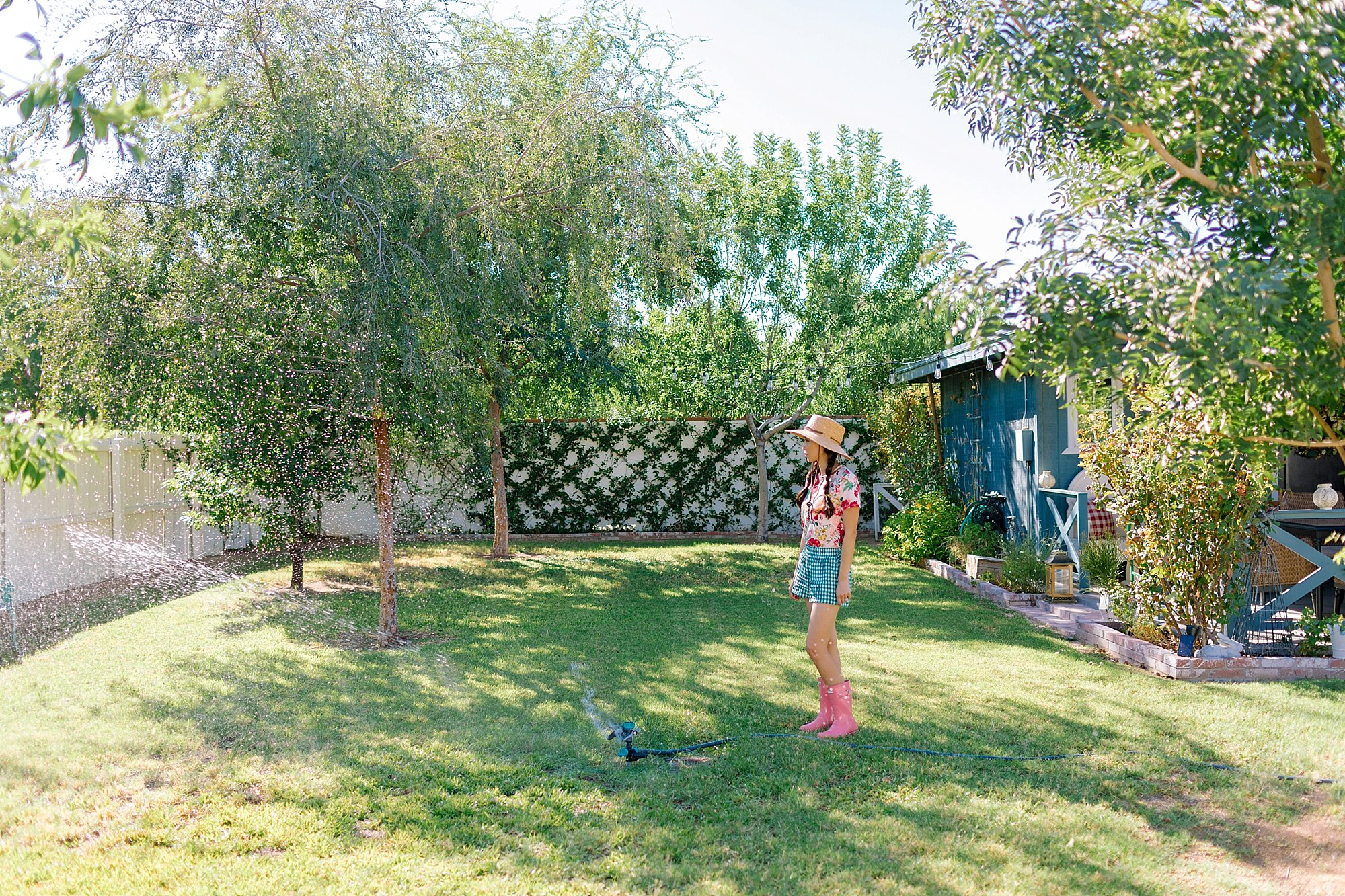 Diana Elizabeth backyard watching the lawn get sprayed with a sprinkler, jasmine trellis in the baackground