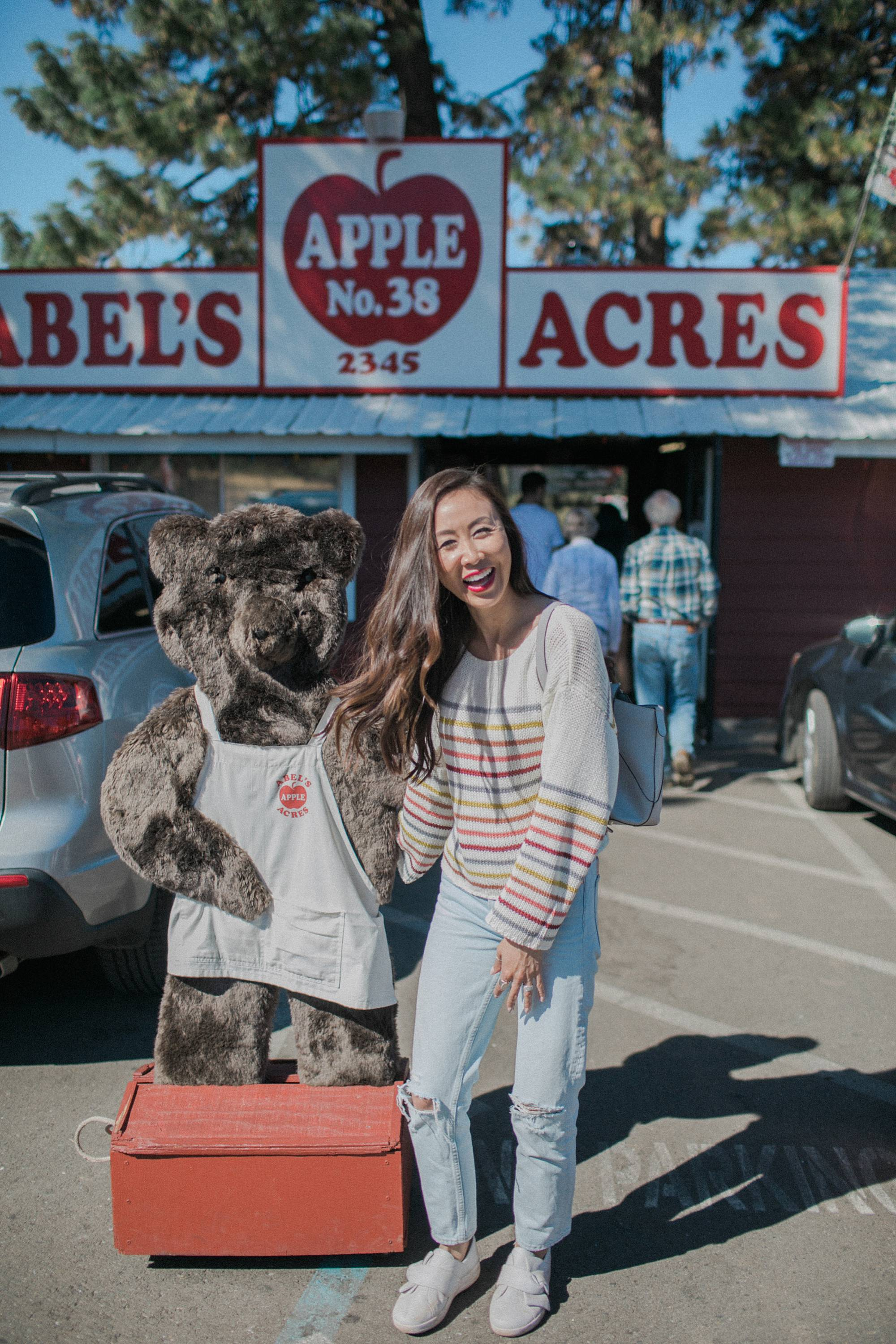 Mabel's apple's at apple hill the famous bears