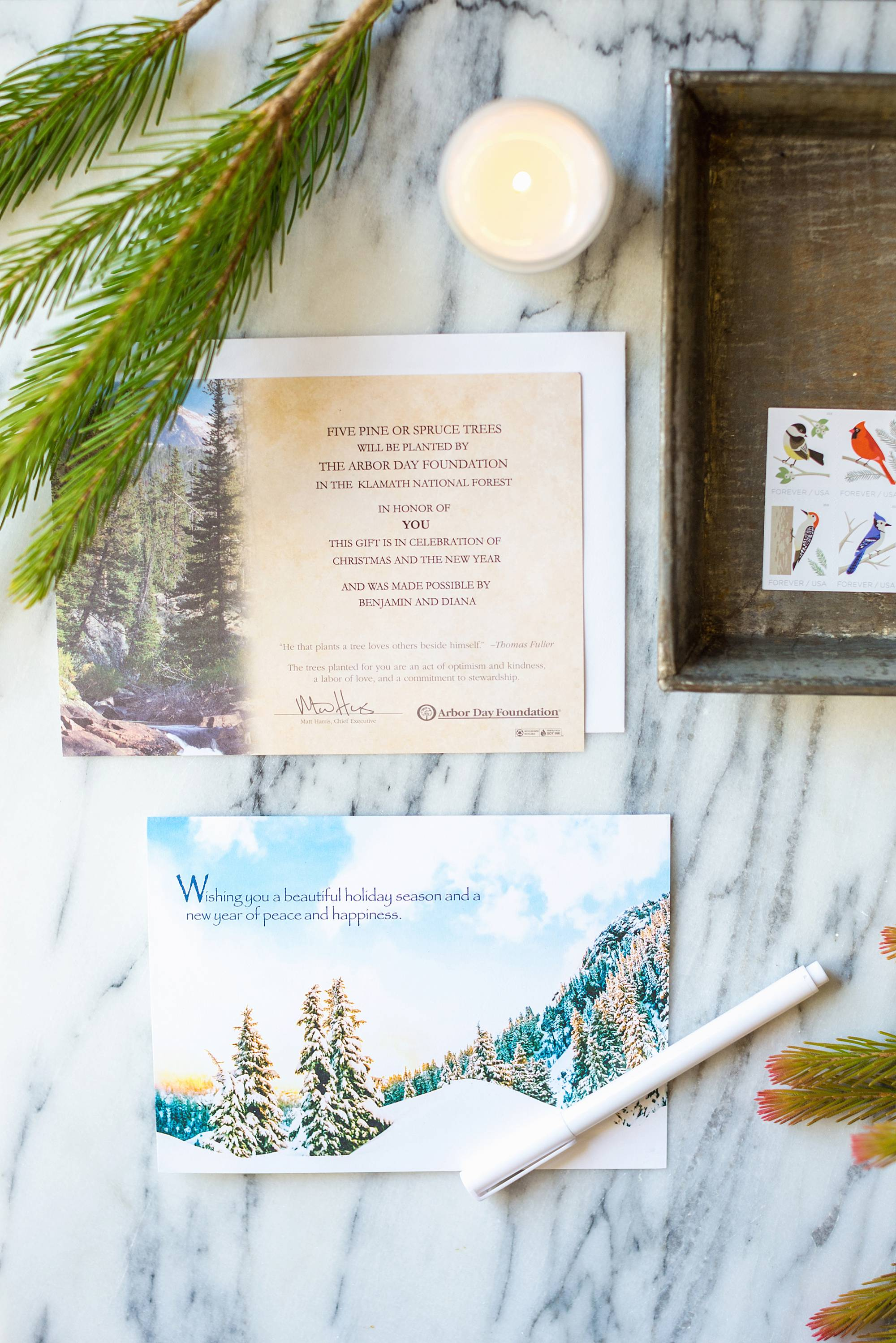 Arbor Day cards send a Christmas tree