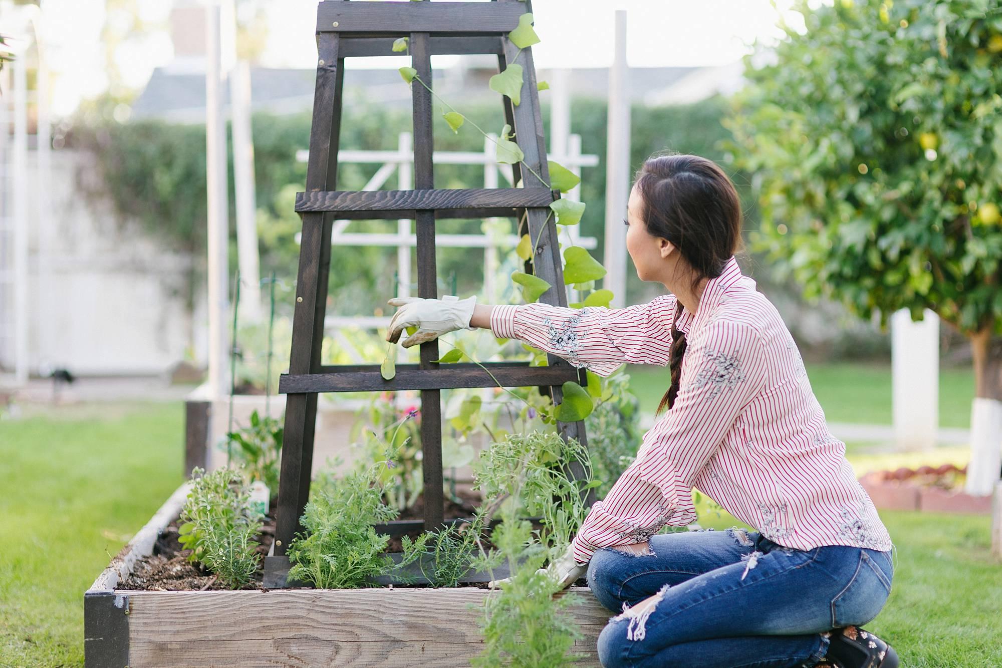 garden obelisk from gardeners in graphite gray stain by phoenix lifestyle garden blogger Diana Elizabeth