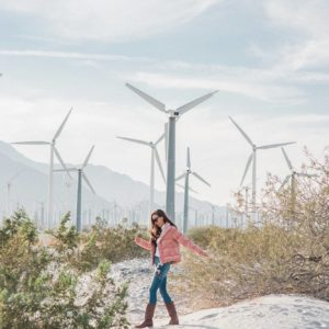 Palm Springs windmills windmill tour pink velvet puffer jacket embroidered floral jeans Abercrombie and tecovas boots on Phoenix lifestyle blogger Diana Elizabeth