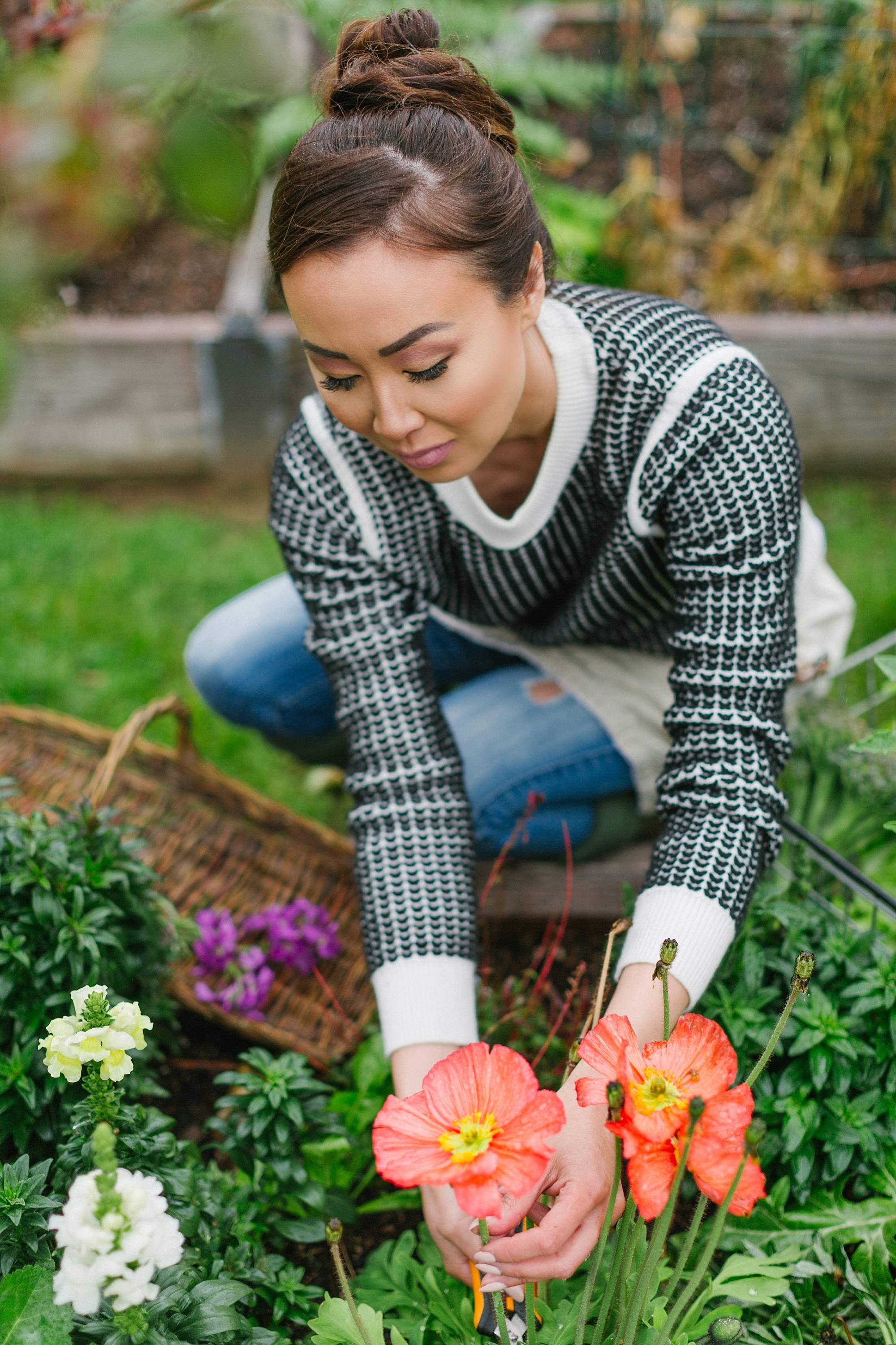 trimming poppy flowers in raised garden beds lifestyle garden blogger Diana Elizabeth #garden #gardenbeds