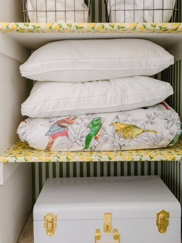guest room closet with wallpaper - lemon shelf paper and green and white stripe wallpaper