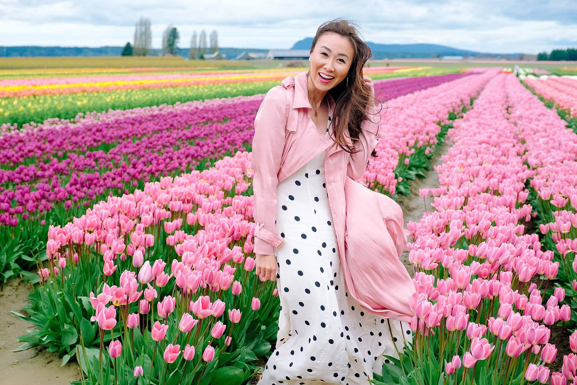 Skagit Valley tulip festival Washington tulip field