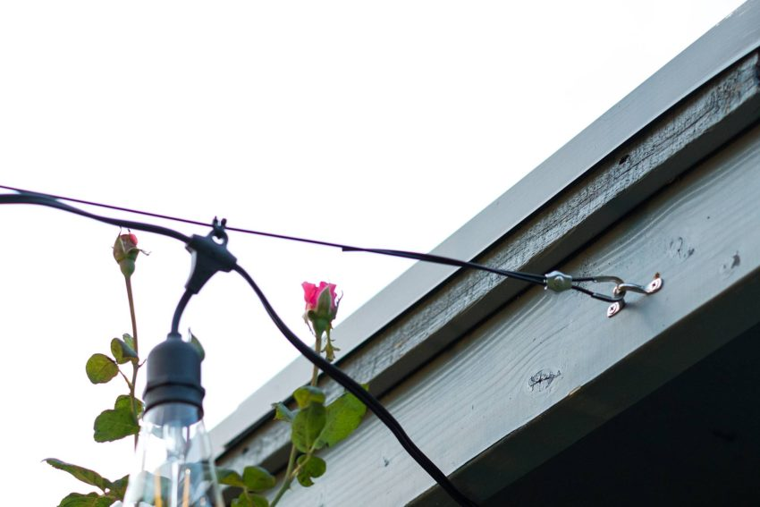 how-to-string-cafe-lights-outdoors-0031 | Diana Elizabeth