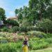 yellow summer dress exploring cheekwood estates in nashville