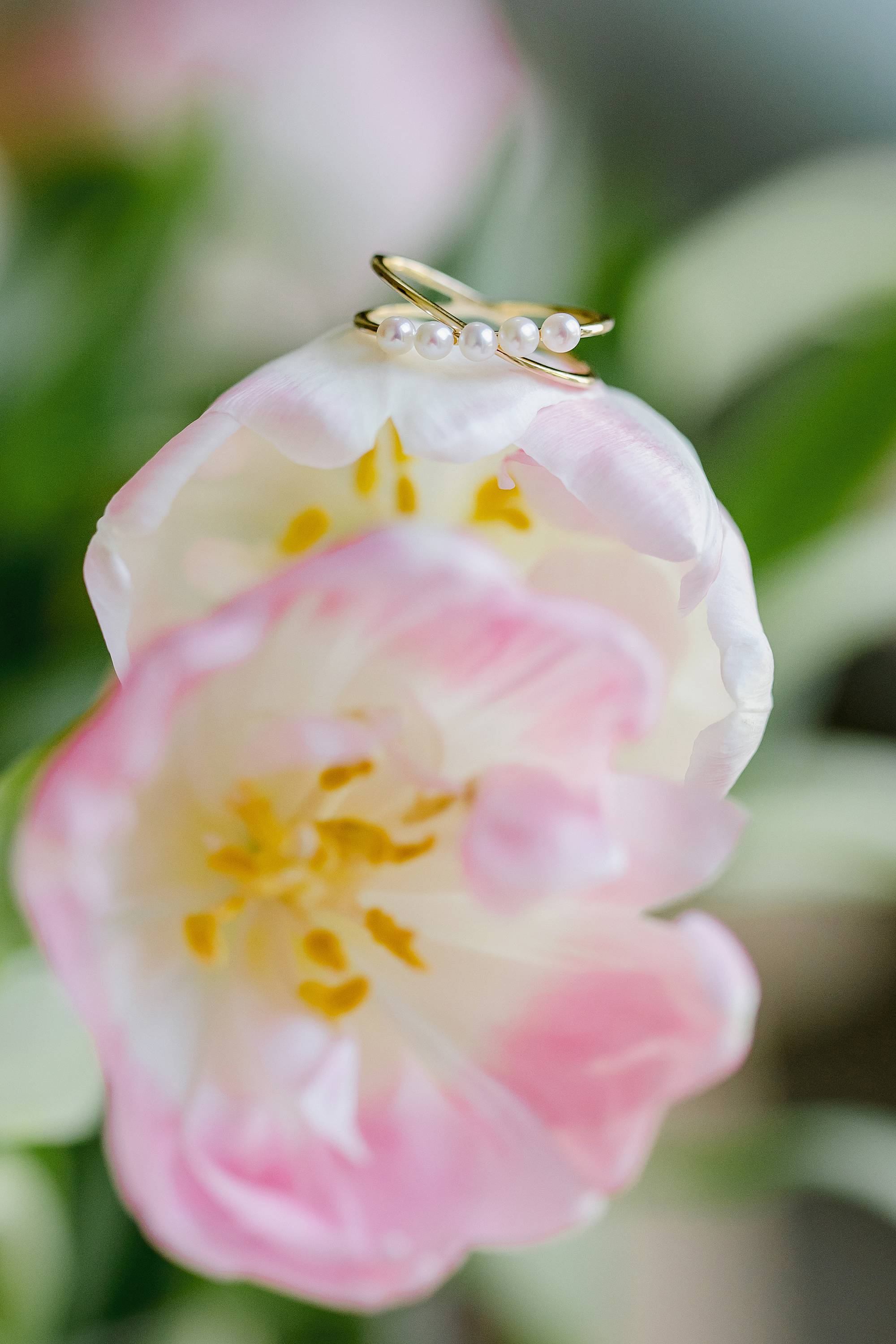 ring shot pearl on tulips