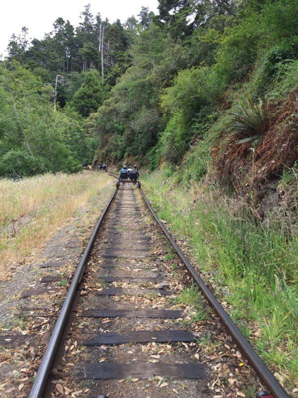 rail biking on skunk train rails
