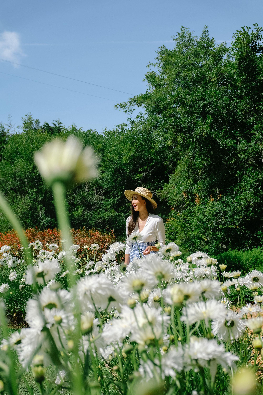 mendocino gardens botanical gardens