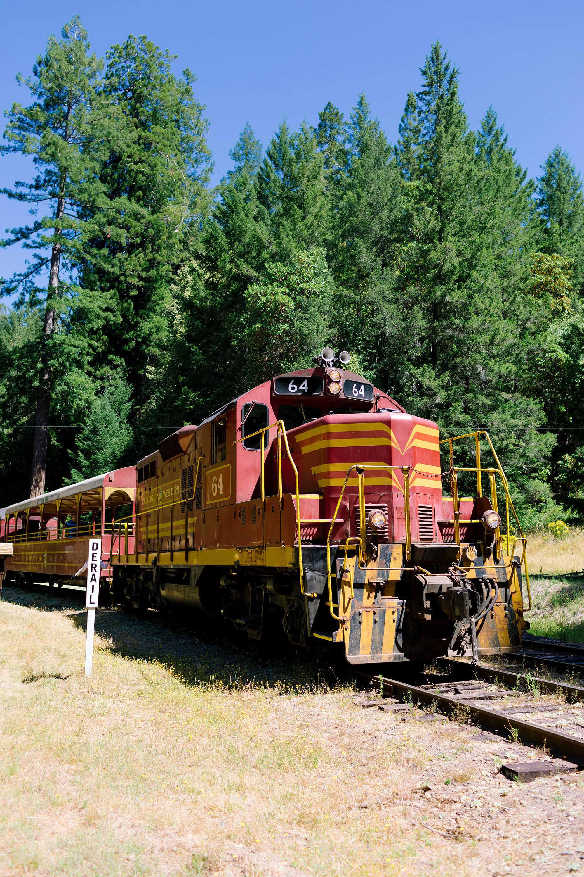 skunk train ride through the redwoods