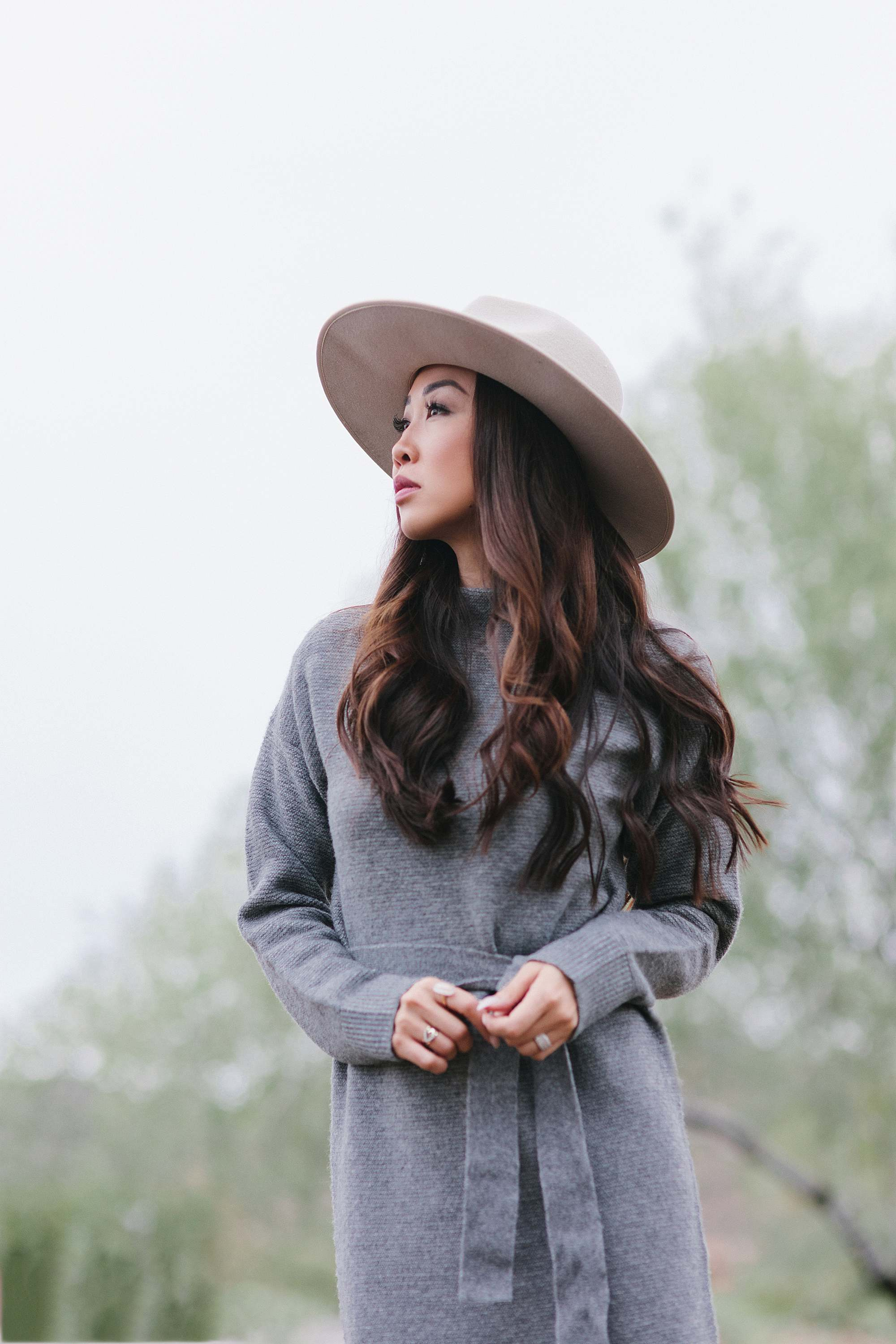 sweater dress outfit idea - sweater dress mock neck turtleneck and wool hat fall look