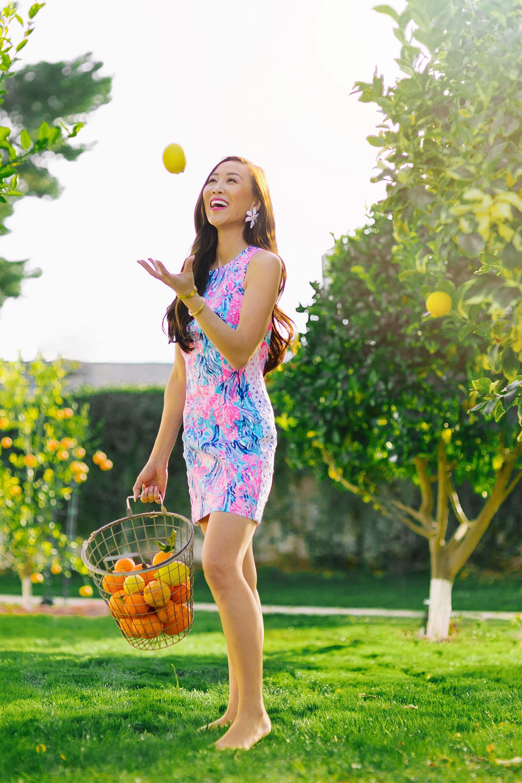 Lilly Pulitzer shift dress citrus farm phoenix lifestyle style blogger Diana Elizabeth