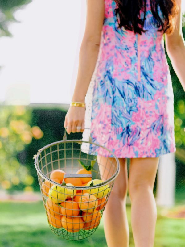 Lilly Pulitzer shift dress citrus farm phoenix lifestyle style blogger Diana Elizabeth