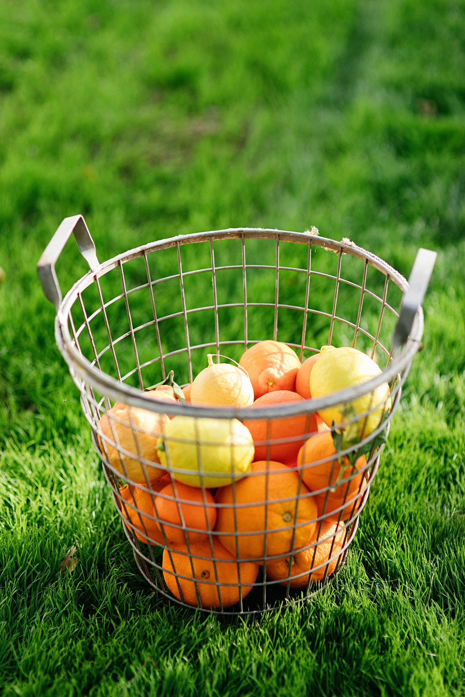 citrus in a basket lemons and orange in basket
