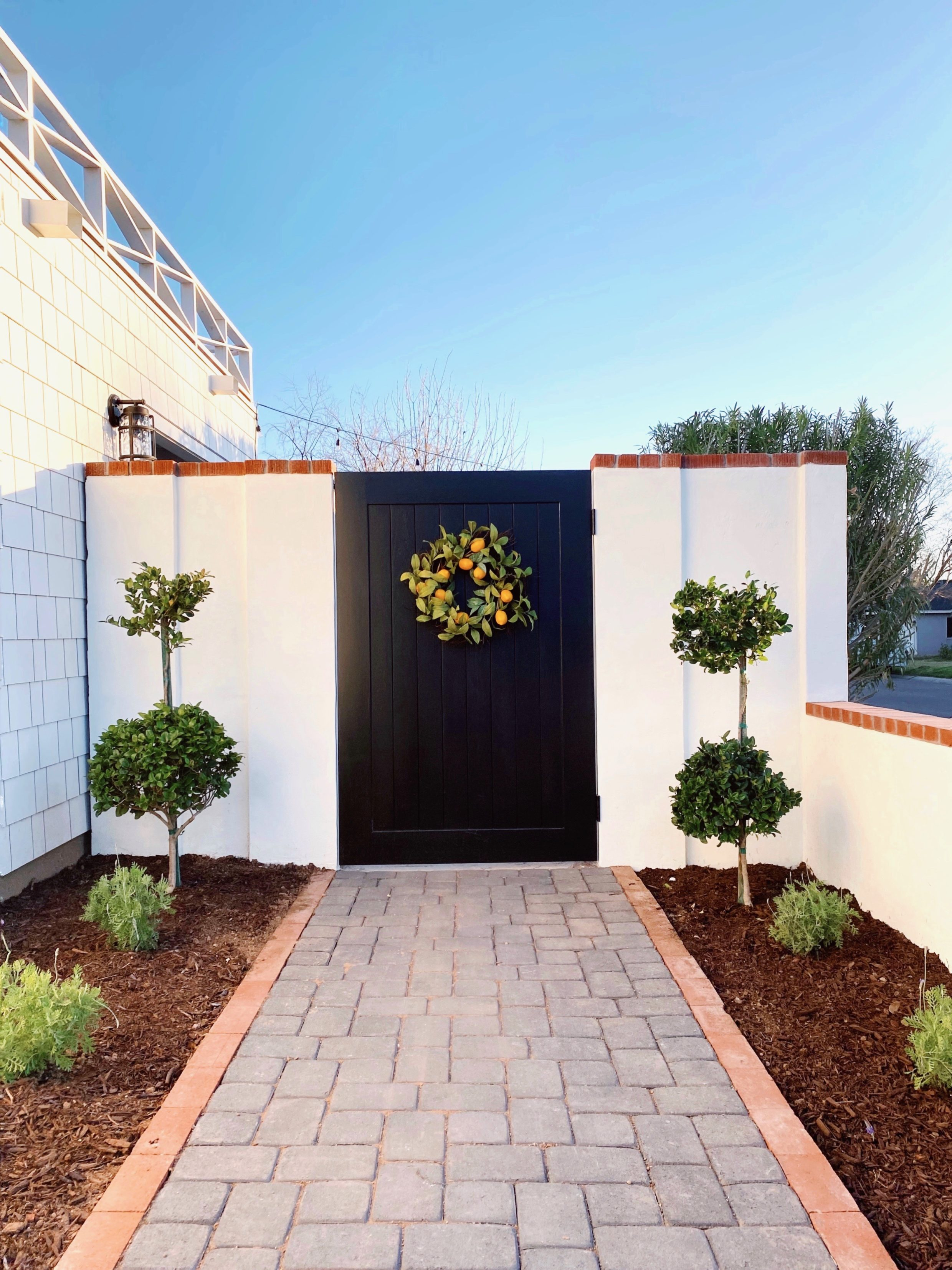 white smooth stucco wall with wood black gate to garden area double topiaries on both sides lifestyle home blog Diana Elizabeth Phoenix Arizona