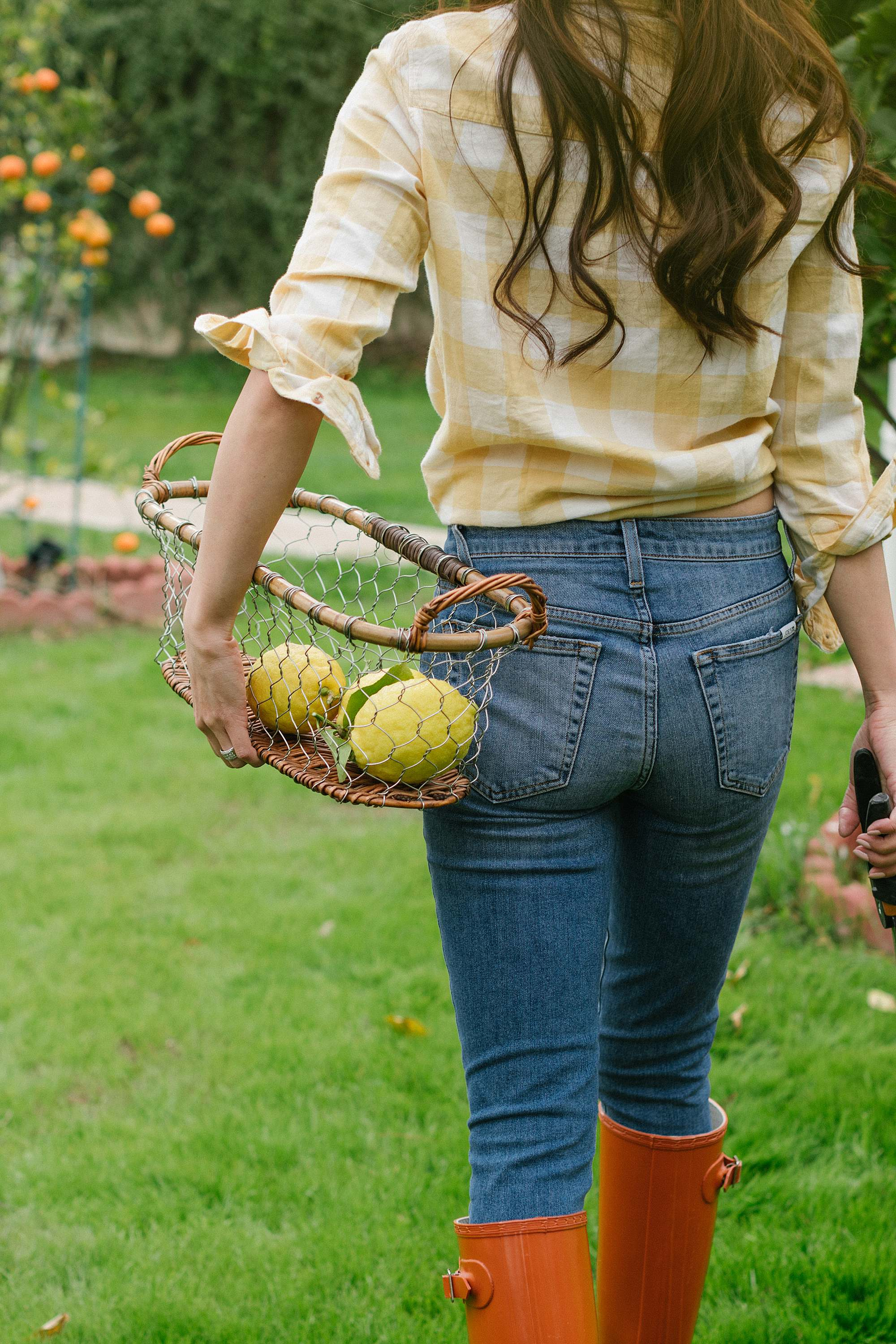 Diana Elizabeth in yellow an white buffalo check top picking citrus in basket // phoenix lifestyle blogger garden arizona home blog