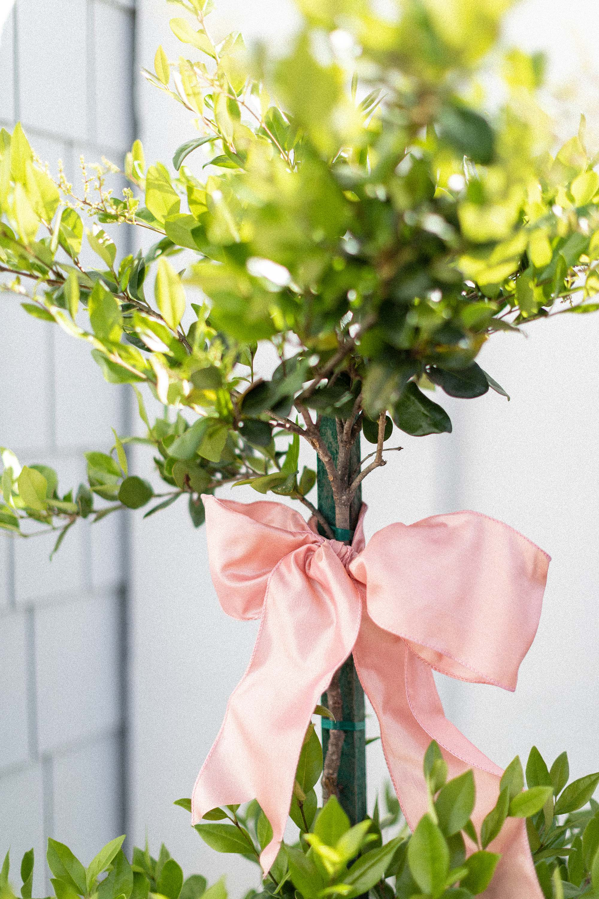 pink wire bow on topiary tree for easter
