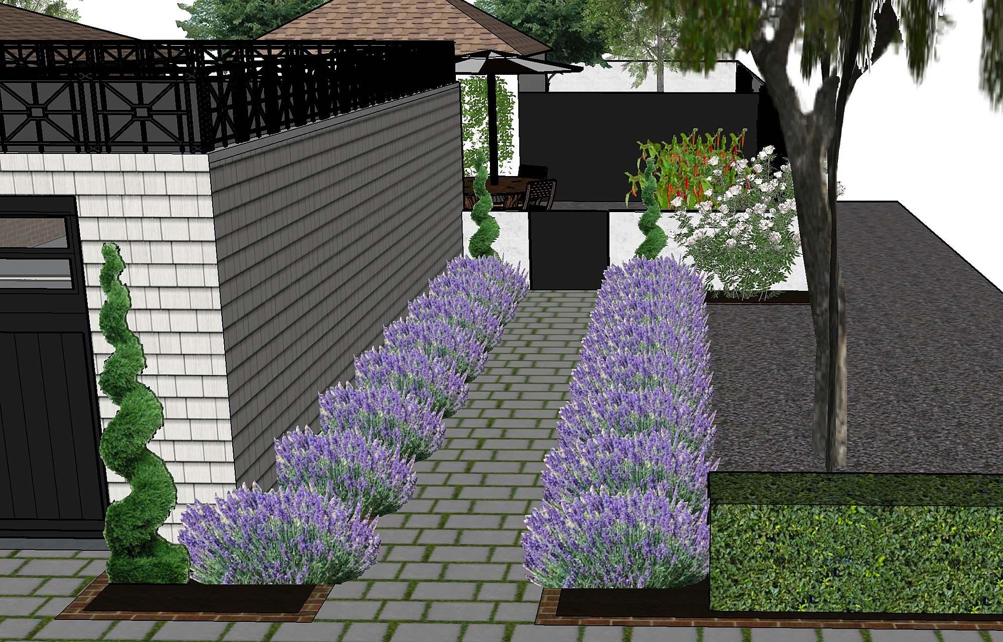 Rendering by k design of landscape - phoenix arizona landscape designer