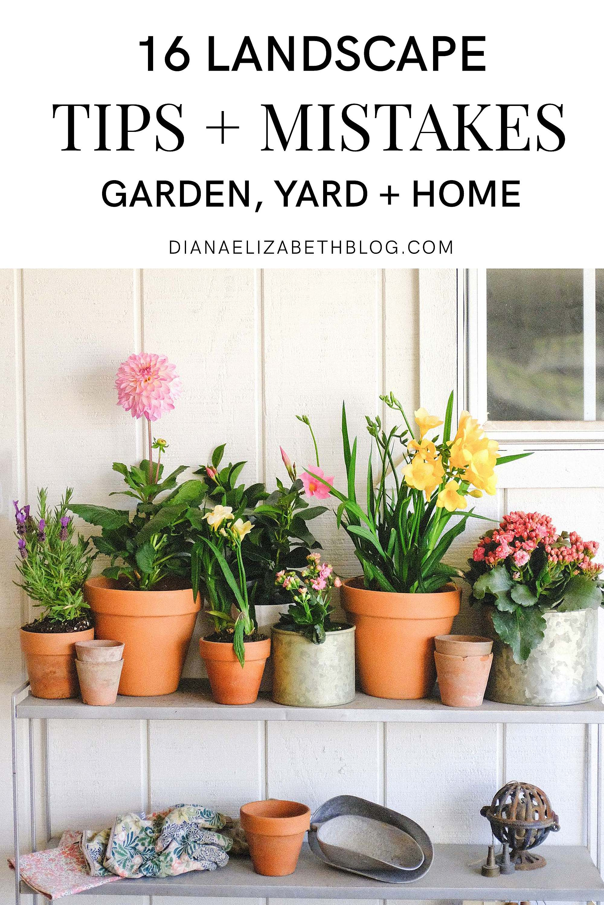 sharing landscape and garden lessons and mistakes we made that were expensive so you can avoid them!