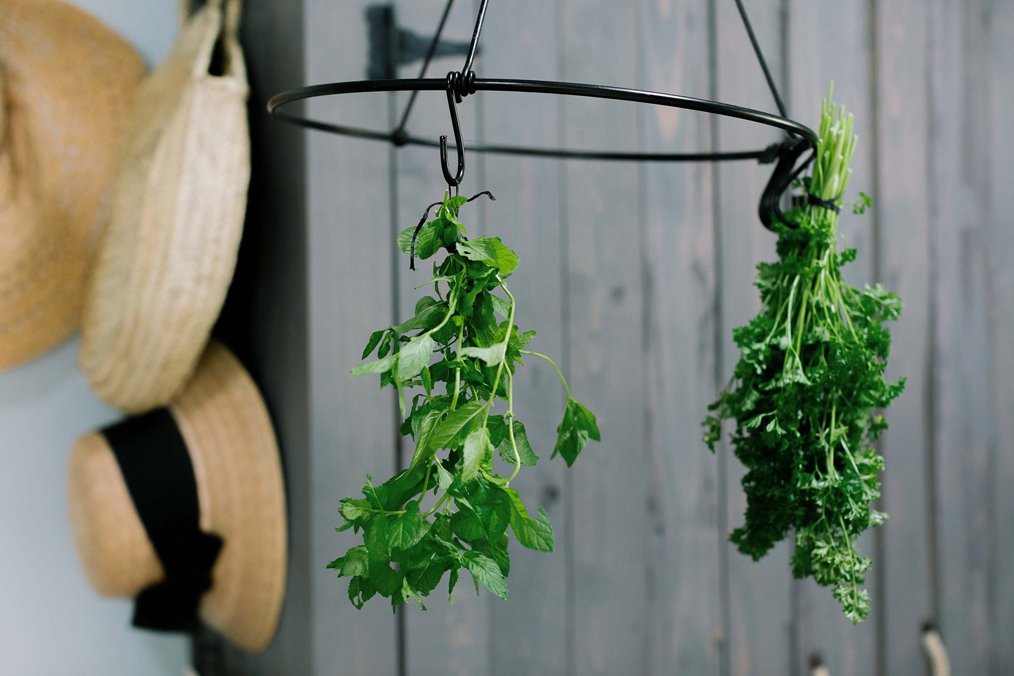 drying herbs on a rack