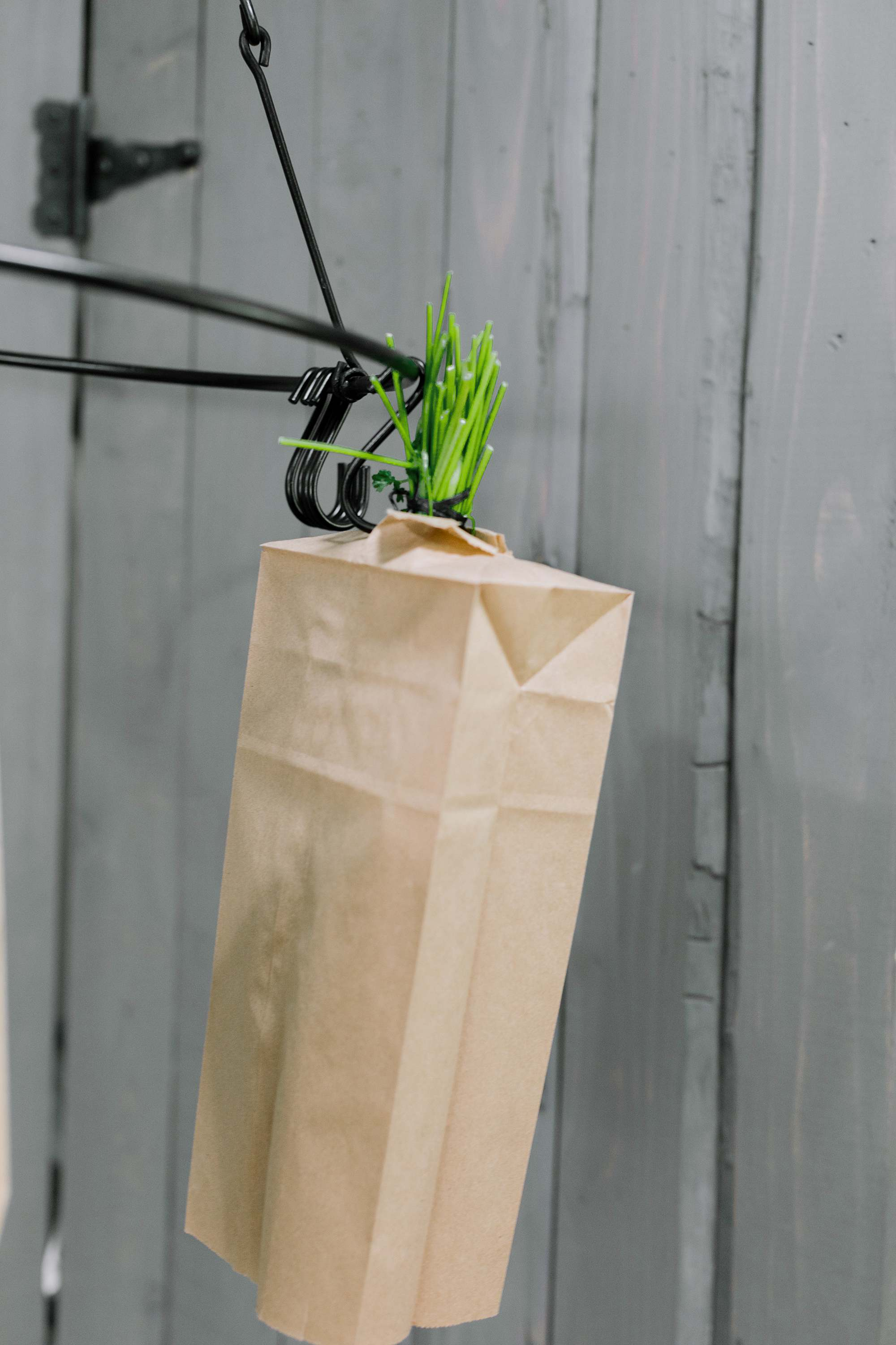 paper bag on drying herbs to keep dust off