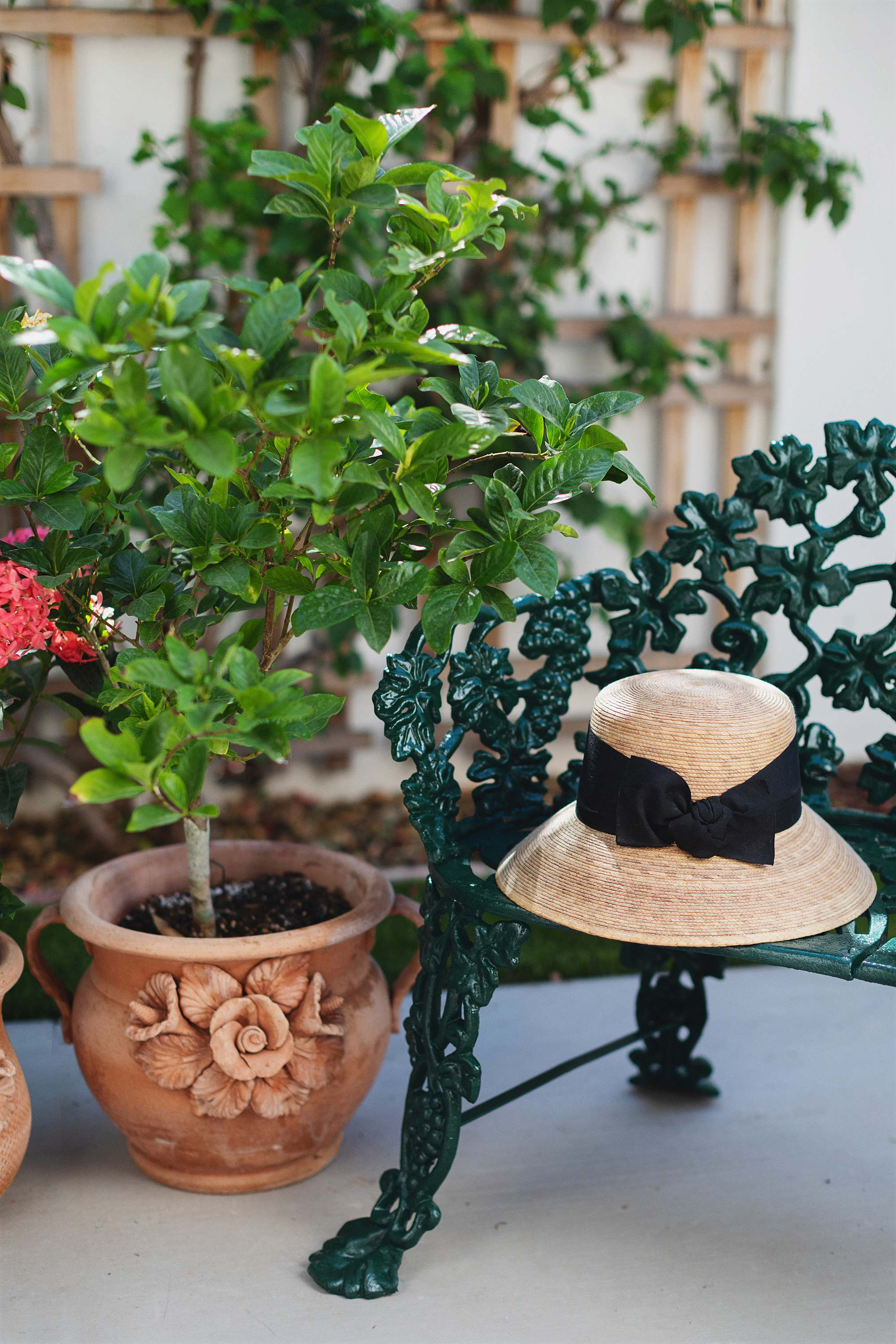 cast iron benches, garden hat on top of them painted dark hunter green