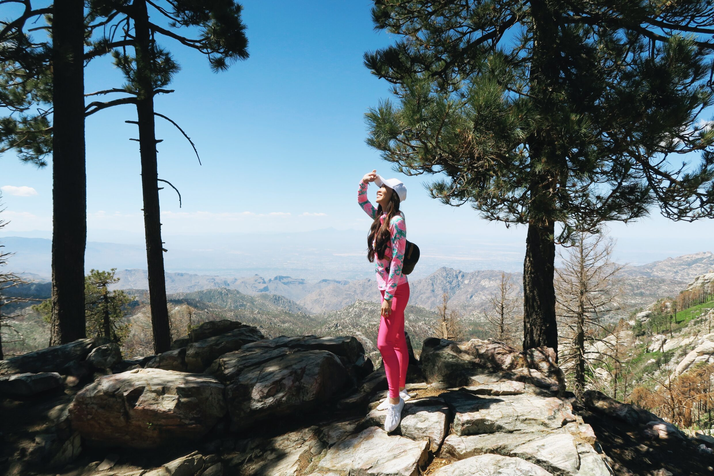 top of mount Lemmon view