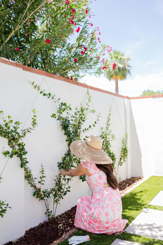 Lilly Pulitzer Lillyanne Eyelet Midi Dress on Phoenix lifestyle blogger Diana Elizabeth Steffen in big oversized hat in the garden, garden and lifestyle blog