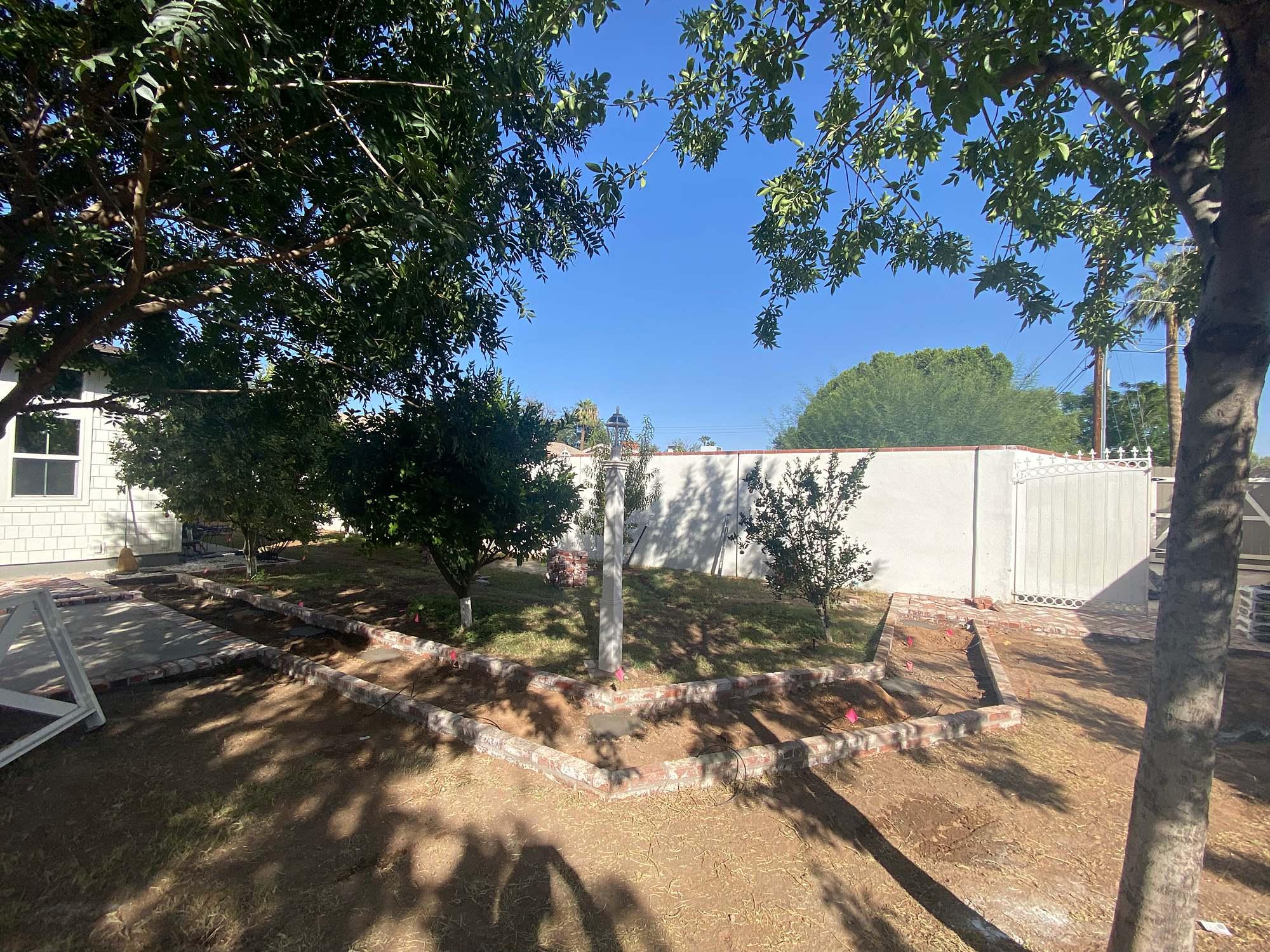 small orchard area in backyard home in Phoenix Arizona